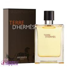 Hermes Terre Hermes, edt., 100 ml